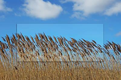 Prairie Grasslands Print by Steven  Michael