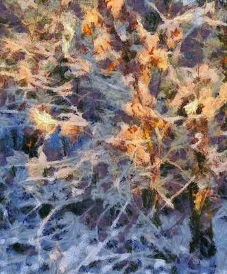 Snowstorm Mixed Media - Winter Glory by Dan Sproul