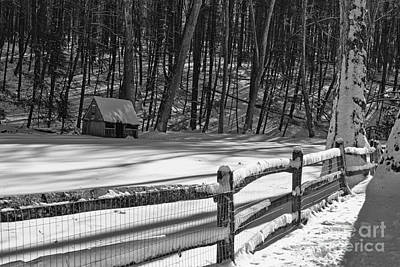 Mill In Woods Photograph - Winter Hut In Black And White by Paul Ward