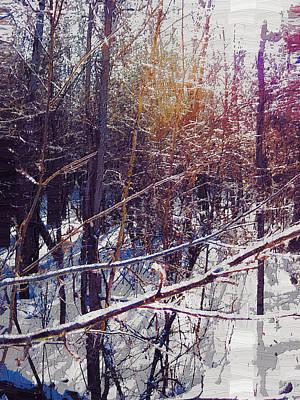 Manipulation Photograph - Winter Ice Storm by Mario Carini