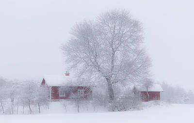 Winter Trees Photograph - Winter Idyll by Allan Wallberg