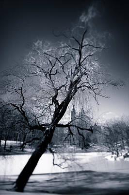 Winter Scenes Photograph - Winter In Central Park by Dave Bowman