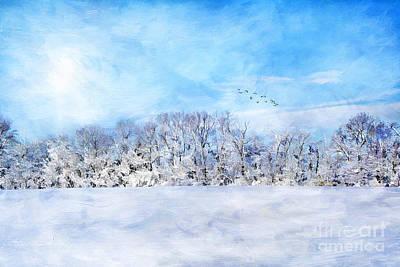 Winter Landscape Print by Darren Fisher