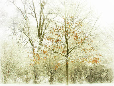 Winter Leaves Print by Julie Palencia