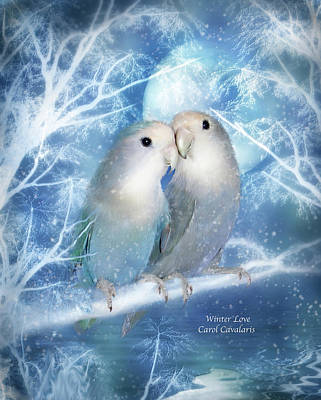 Lovebird Mixed Media - Winter Love by Carol Cavalaris