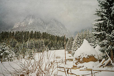 Winter Mood Print by Cristina-Velina Ion