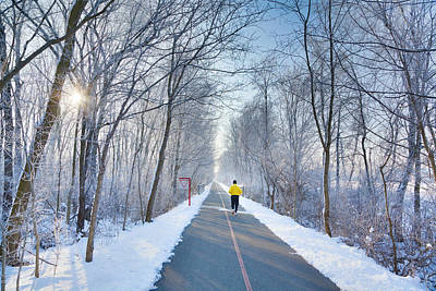 Winter Morning In The Park Print by Alexey Stiop