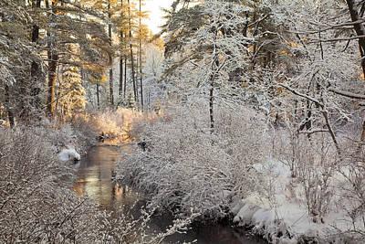 Winter Morning Print by Larry Landolfi