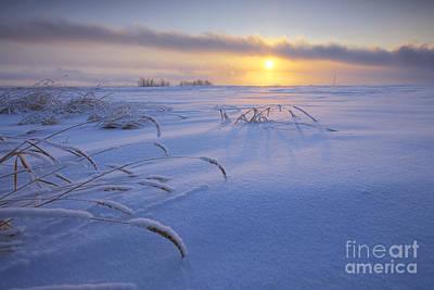 Winter Morning On The Prairie Print by Dan Jurak