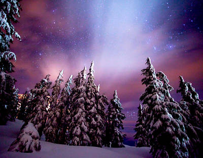 Winter Scenes Photograph - Winter Nights by Darren  White