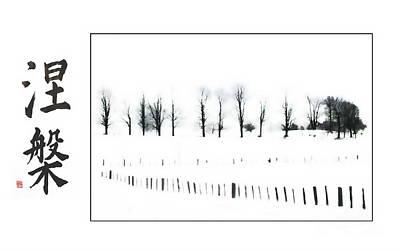 Photograph - Winter Nirvana  by Andrea Kollo