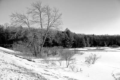 Snow Scenes Photograph - Winter On The Moose River by David Patterson