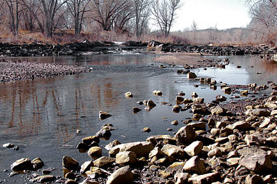 Winter On The South Platte River - Denver Colorado Print by David Patterson