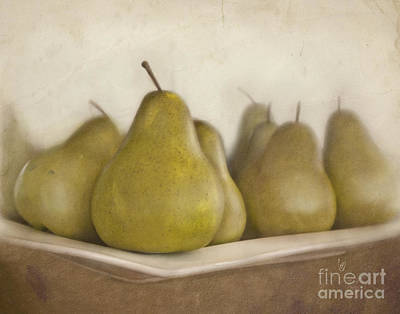 Winter Pears Print by Cindy Garber Iverson