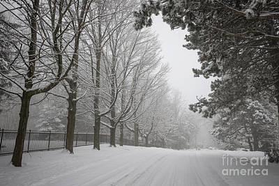 Conditions Photograph - Winter Road by Elena Elisseeva