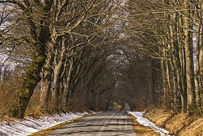 Winter Road Print by Inge Riis McDonald