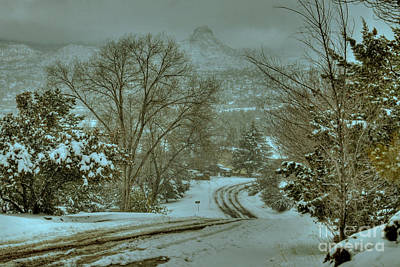 Winter Road Print by K D Graves