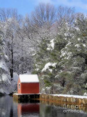 Winter Scene  Print by Karol Livote