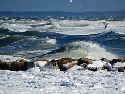 Winter Seascape Print by Dianne Cowen