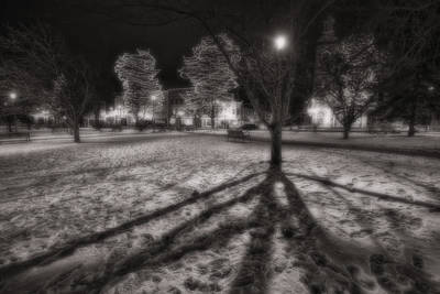 Groundhog Photograph - Winter Shadows And Xmas Lights by Sven Brogren