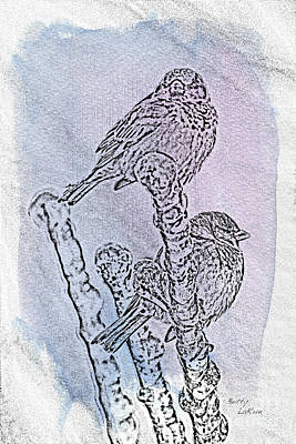 Sparrow Digital Art - Winter Sparrows 1 by Betty LaRue