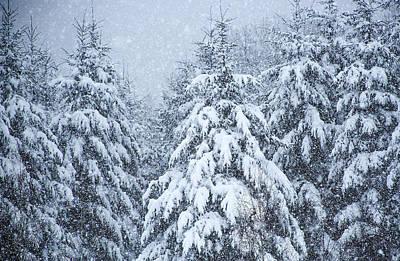 Winter Storm Original by Dennis Bucklin