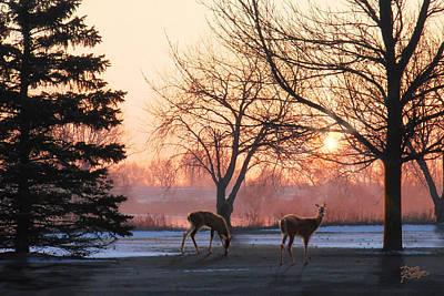 Winter Sunrise Greeting Print by Doug Kreuger