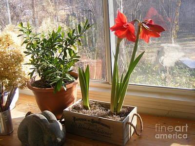 Winter Sunroom Print by Nancy Kane Chapman