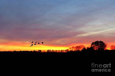 Canadian Geese Photograph - Winter Sunset by Scott Cameron