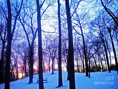 Ptints Photograph - Winter Sunset by Violeta Ianeva