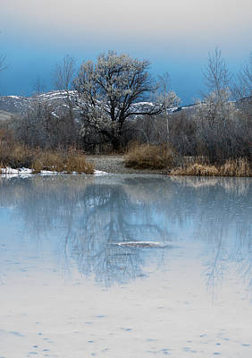 Daysray Photograph - Winter Taking Hold by Fran Riley