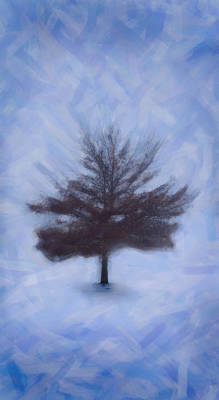 Impasto Oil Photograph - Winter Tree by Emmanouil Klimis