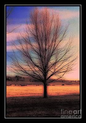 Winter Tree Print by Kathleen Struckle