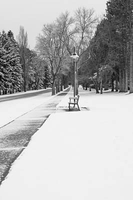 Daysray Photograph - Winter Walk by Fran Riley