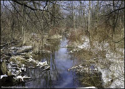 Leaf Photograph - Winter Water Reflections On Mot by LeeAnn McLaneGoetz McLaneGoetzStudioLLCcom