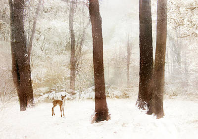 Rural Digital Art - Winter Whimsy by Jessica Jenney