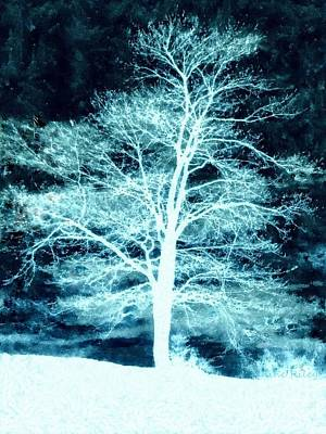 Winter Whispers Through The Night Print by Janine Riley