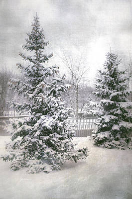 Snow Covered Trees Digital Art - Winter White 2 by Julie Palencia