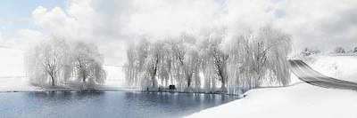 Snowy Digital Art - Winter Willows by Lori Deiter