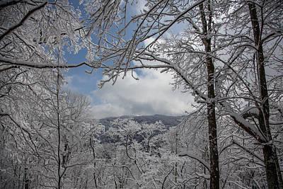 Winter Window Wonder Print by John Haldane