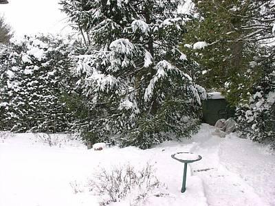 Winter Digital Art - Winter Wonder Land by Anthony Morretta