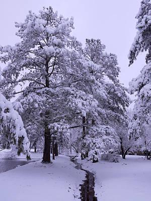 Snow Covered Trees Digital Art - Winter Wonderland 3 by Mike McGlothlen