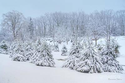 Winter Wonderland In West Virginia Print by Benanne Stiens