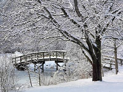 Winter Wonderland Print by Janice Drew