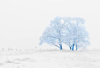 Snowed Trees Mixed Media - Winter Wonderland by Vel Verrept