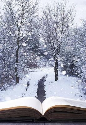 Winter Woodland Book Print by Amanda Elwell