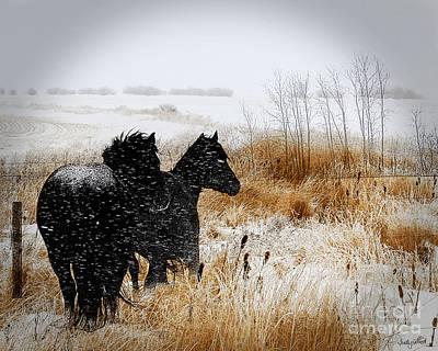 Judy Wood Digital Art - Winter's Coming by Judy Wood