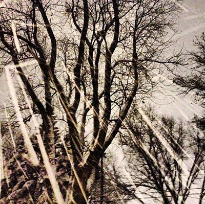 Winters Eve Original by Tory Stoffregen