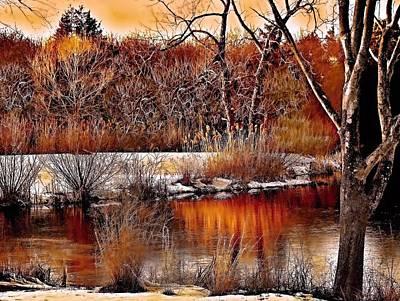 Rick Todaro Photograph - Winters Light by Rick Todaro