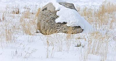 Bleak Desert Digital Art - Winterscape 10 by Otri Park